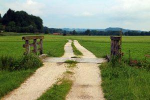 agriculture-barn-boardwalk-bridge-276460